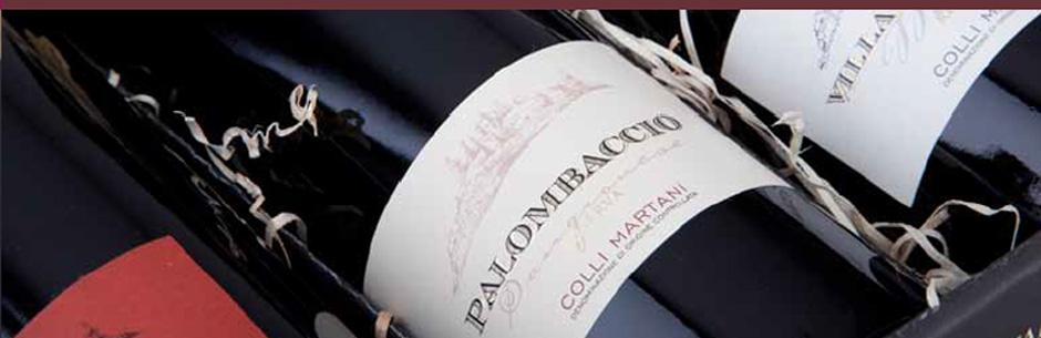 palombaccio-1